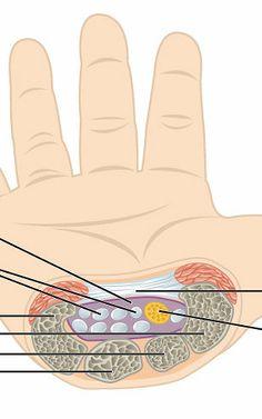 terapia ręki kurs kraków