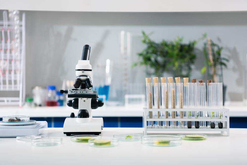 Dostępne wagi laboratoryjne